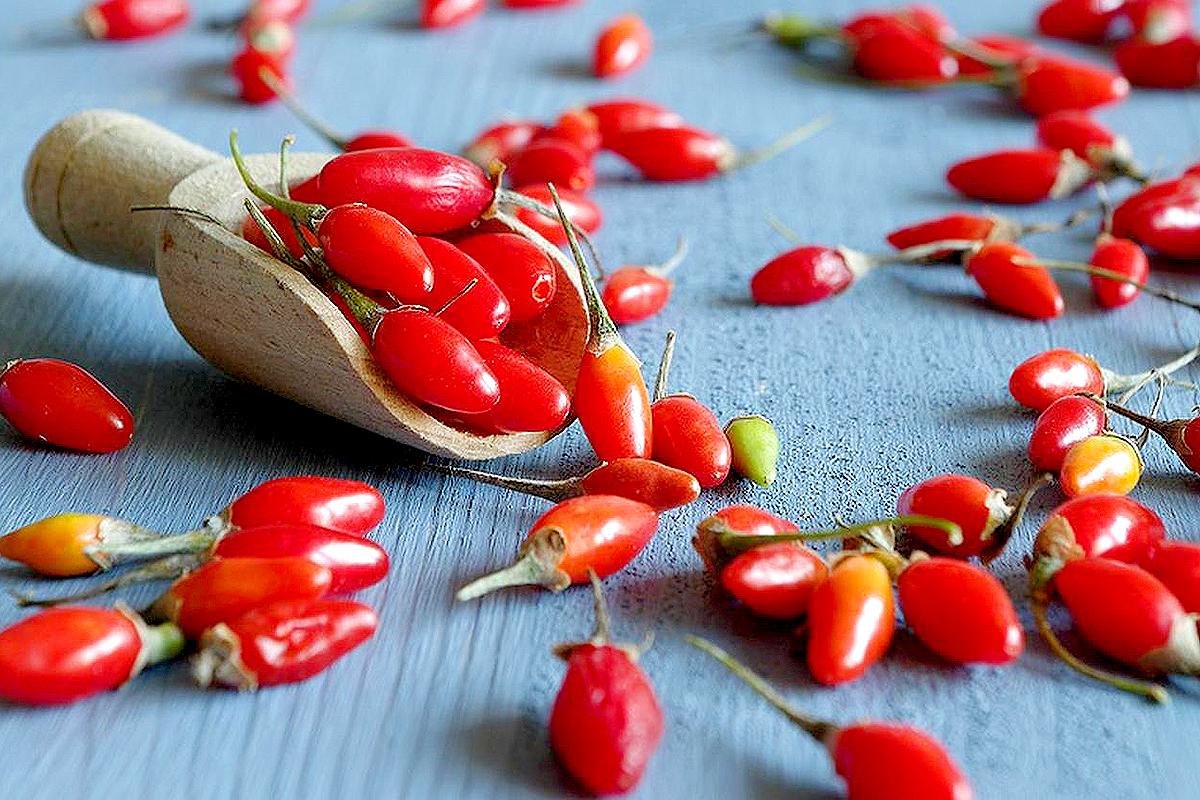 ягоды годжи польза вред